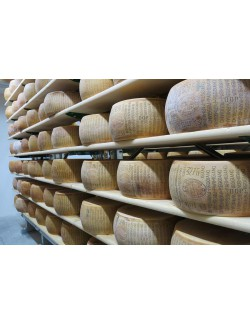 Parmesano Reggiano DOP Artesano 36 meses – Montecoppe