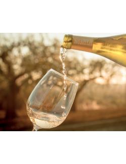 Vino Blanco Jean Leon Chardonnay 3055 Ecológico